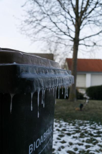 Eingefrorene Biotonne